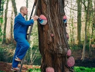 Cartoonist Zaza geeft bomen in Bouckenborghpark een gezicht, acteur Luk Wyns een stem