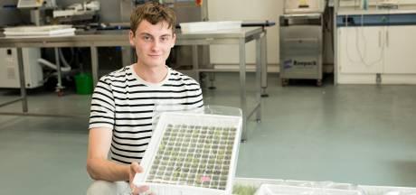 Sjoerd is in zijn vakantie varenkweker: 'Eigenlijk had ik niet zoveel met planten'