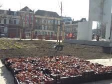 Het Ivensplein in Nijmegen gaat de groene kant op