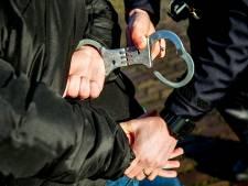 Werkendammer haalt 'levensgevaarlijk gedrag' uit tijdens vlucht voor politie vanaf Waalwijk
