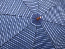Aanklager teruggefloten: Voetballers  Elsweide onschuldig in parapluzaak