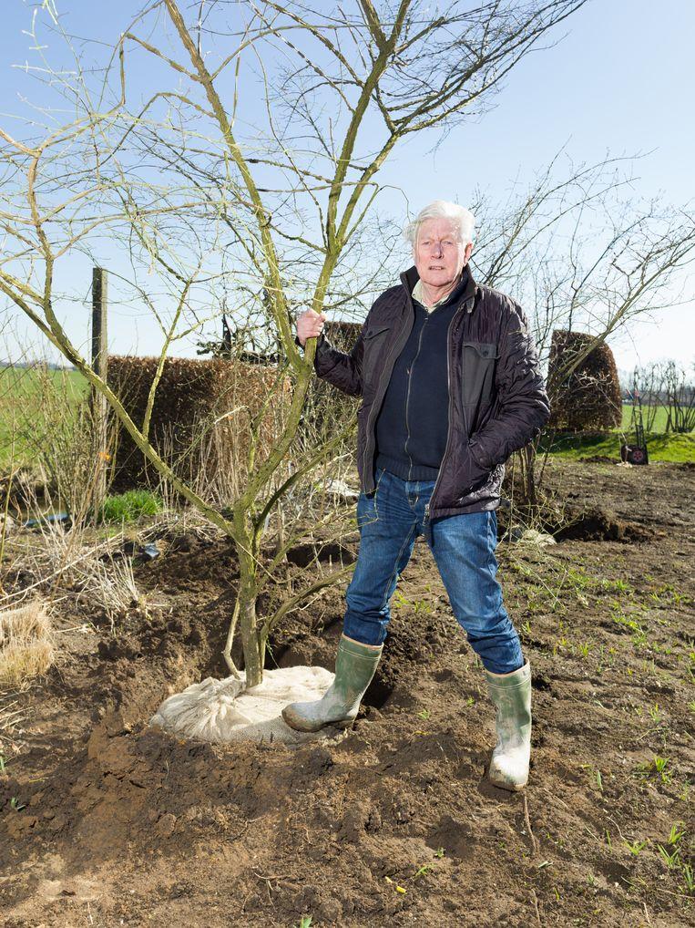 Piet Oudolf: 'Ik zie mensen op hun terrasje zitten zonder een spriet groen. Vaak staat er alleen een bankstel op de tegels en een barbecue. Natuurlijk denk ik dan: mensen, het kan zoveel mooier.' Beeld Ivo van der Bent