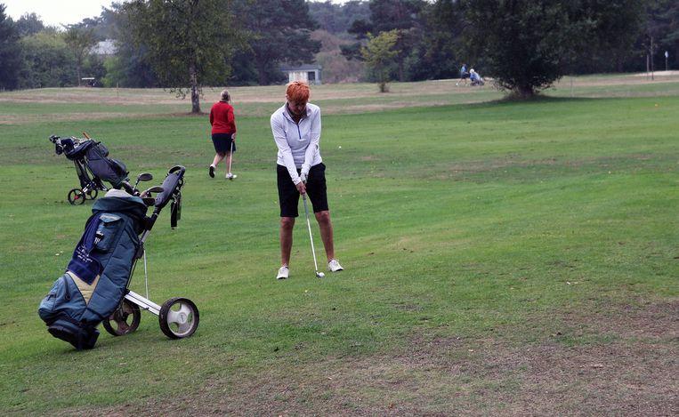 De nieuwe sporthal zou een plaats krijgen op de site van golfclub Witbos.