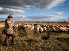 Bestrijdingsmiddelen uit landbouw gevonden midden in Drentse natuur