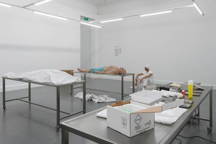 Ajla R. Steinvåg, Positions 6 Bodywork Van Abbemuseum