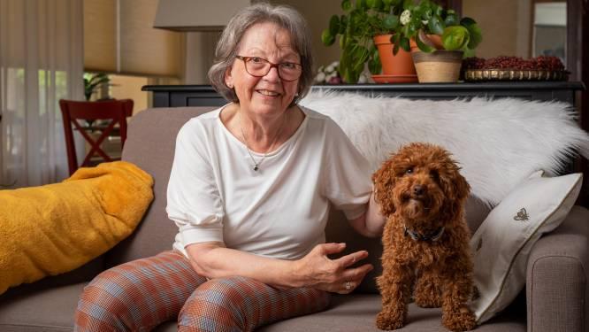 Een oppashond voor ouderen die geen huisdier willen
