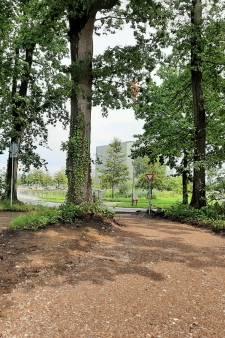 Aanleg fietspad Wageningen Campus is stilgelegd: pad loopt door beschermde houtwal