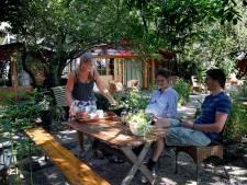 Ontspannen theedrinken en taartjes eten in de tuin: de theetuin is populairder dan ooit