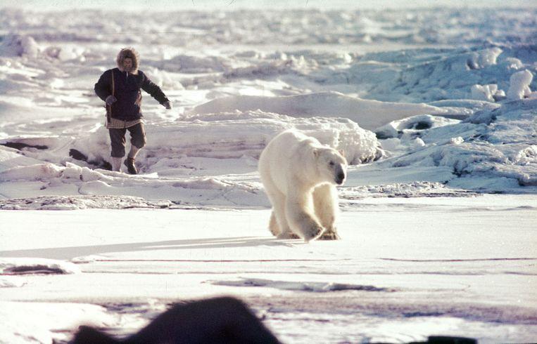 Arne Randers Heen (Noorse Expeditie) jaagt een beer op 30 april 1969  Beeld  Ko de Korte