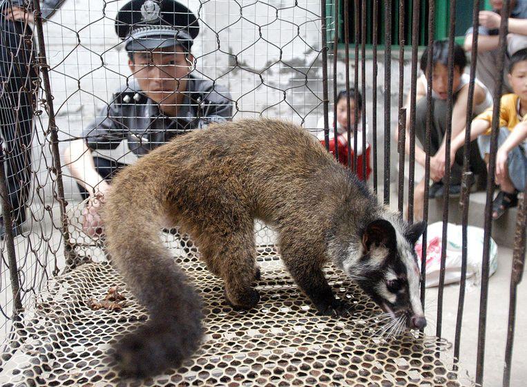 Het dodelijke SARS-virus was overigens afkomstig van een civetkat, die verhandeld werd op een markt met exotische dieren. Ook nu ligt de oorsprong van het Wuhan-coronavirus wellicht bij zo'n beestenmarkt.