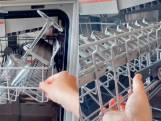 Dankzij deze simpele TikTok-hack krijg je meer spullen in jouw vaatwasser