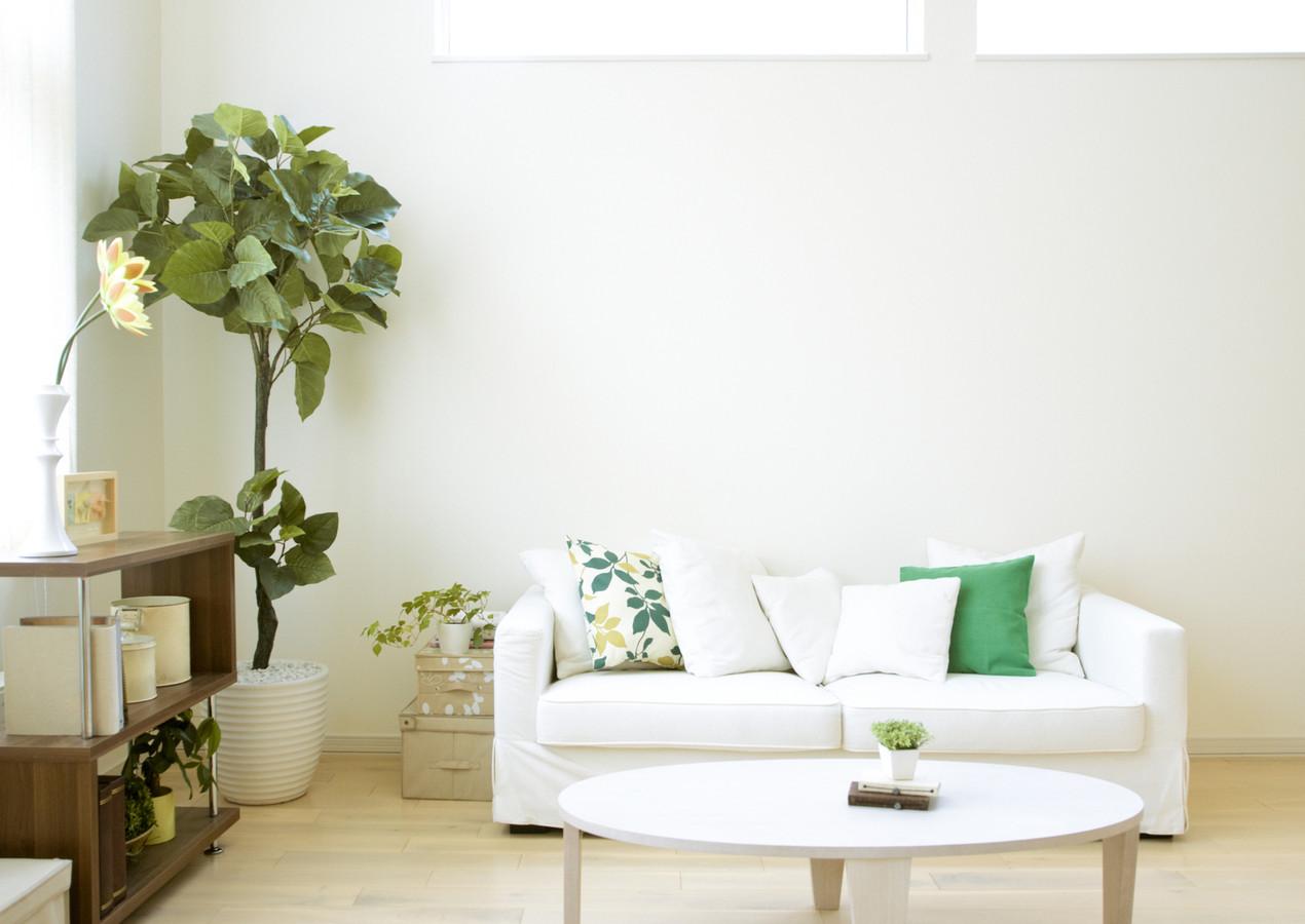 Tv afstoffen, genoeg planten overal, en niemand die merkt dat er niet gedweild is.