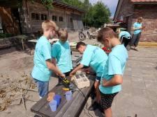 Bestse jeugdraad bouwt insectenhotels en aardbeienkistjes: 'Met je handen werken is leuk'