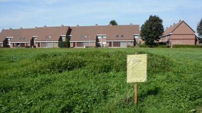 Té lelijk: gemeente weigert bouwvergunning voor sociale flats