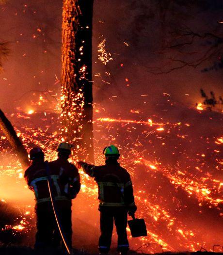 """Un impressionnant feu de forêt se déclare près de Biarritz: """"Une partie de notre patrimoine part en fumée"""""""