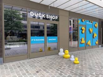 Eendjes veroveren Hasselts straatbeeld tijdens eerste editie van 'Duck Parade'