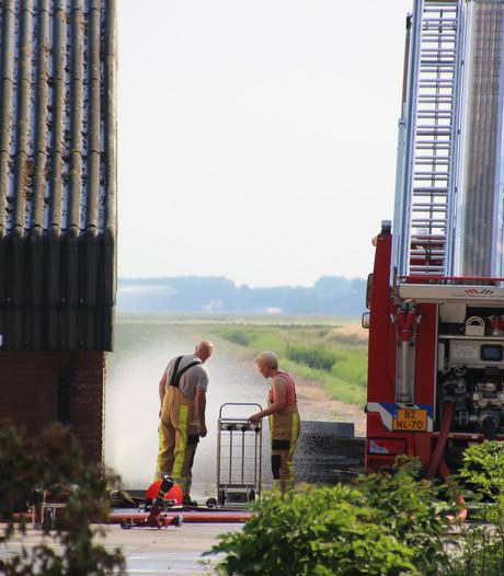Brandweer zorgt voor verkoeling in snikhete pluimveestallen