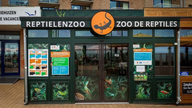 """Het doek valt over het Serpentarium in Blankenberge: """"We zoeken een nieuwe thuis voor meer dan 200 reptielen"""""""