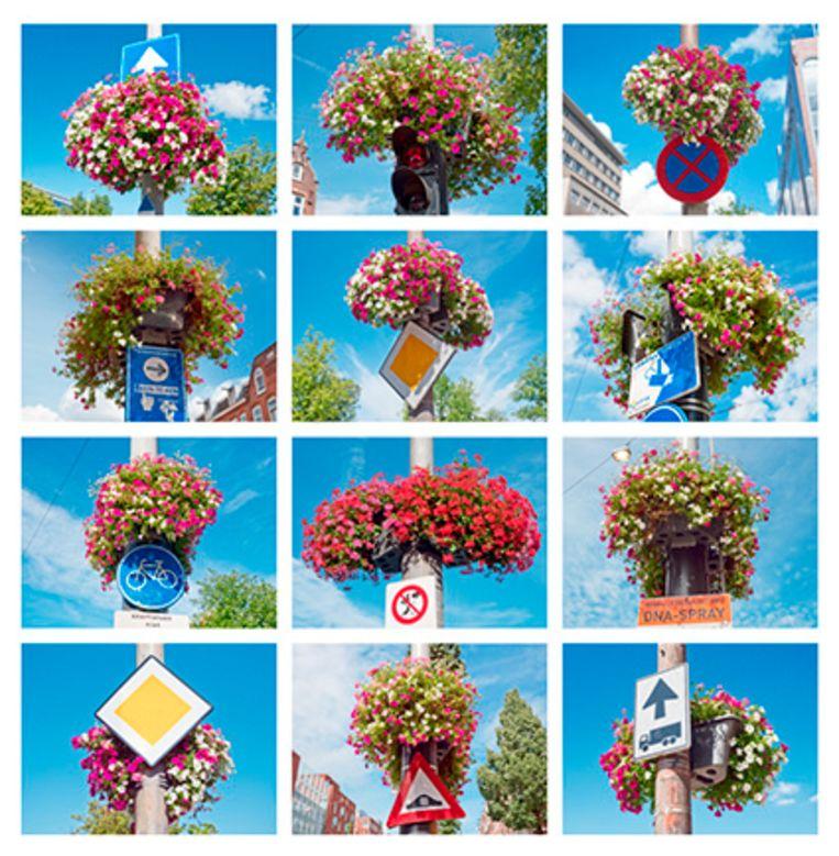 Kunstenaar Allard Boterenbrood fotografeerde door de gemeente opgehangen bloembakken aan lantaarnpalen, die hij zelf omschrijft als 'opvrolijkdrift van de ambtenarij'. Beeld Allard Boterenbrood