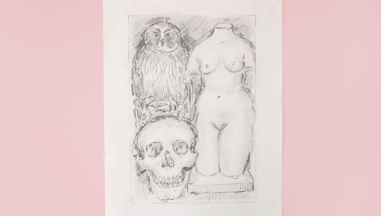 Potloodtekening van uil, schedel en tors, Jan Wolkers, 1988. Beeld Annabel Miedema