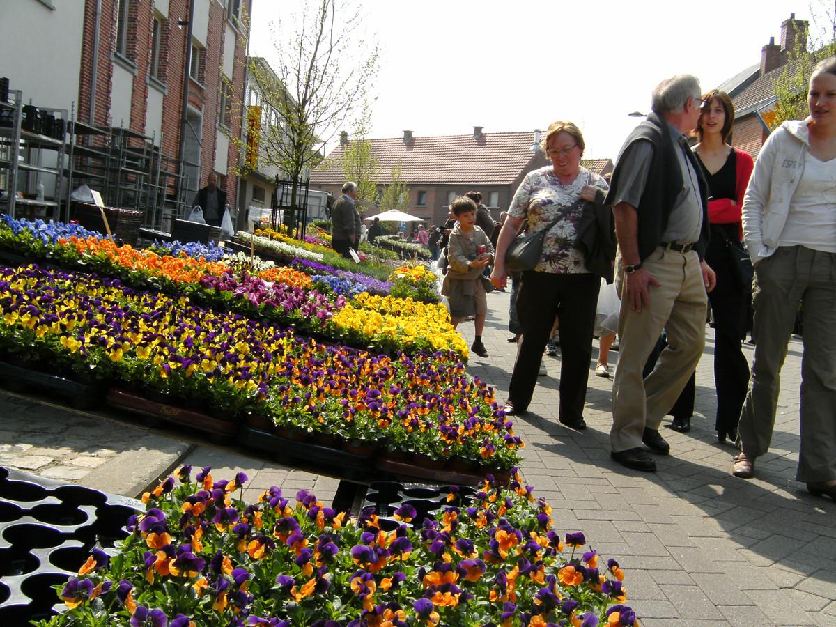 Een deeltje van de opgestelde bloemen tijdens de Plantenbeurs.