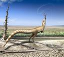 Artistieke impressie van de Sinosauropteryx, een kleine, gevederde dinosaurus.