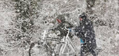 Heel even bondgenoten door de eerste sneeuw