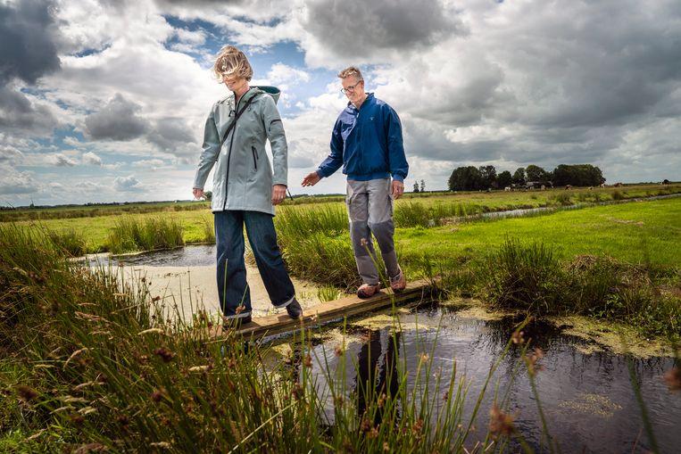 Sjoerd Miedema, hier met zijn echtgenote Janna van der Meer op het land, heeft de grondwaterstand in het veenweidegebied De Lytse Deelen verhoogd in ruil voor geld van bedrijven die middels certificaten hun uitstoot afkopen. Beeld Reyer Boxem