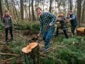 Voedselbossen zijn booming: 'Biodiversiteit gaat dramatisch achteruit, voedselbossen herstellen ecosysteem'