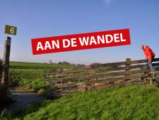 De wandelroute langs de verdwenen molens in de polder bij Hazerswoude