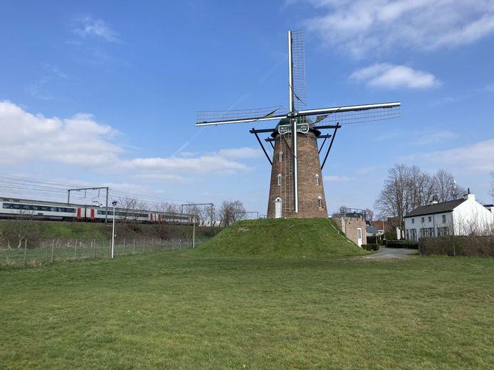De wieken van de Heirbrugmolen zullen zondag draaien.