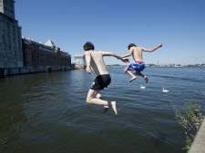 Even niet zwemmen bij het Stenen Hoofd om nesten zeldzame zwaluw