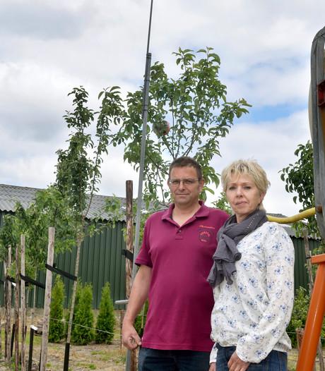 Vogelverschrikkers van de boomkweker mogen van de rechter blijven