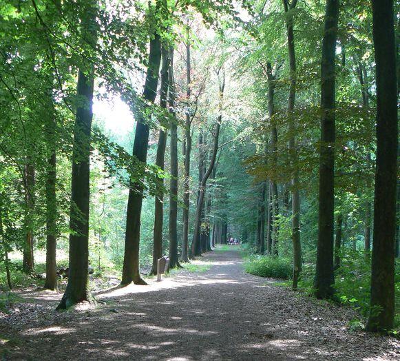 Provinciedomein 't Veld in Ardooie