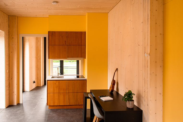 Ripple, het duurzame huis ontworpen door studenten van de TU Eindhoven.  Beeld Virtue