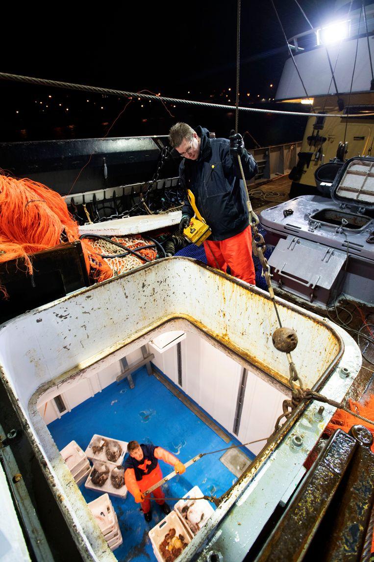 Den Helder, 1-3-2019, Schipper Cor Vonk van de TX1 lost inde haven van Den Helder zijn vis. Foto Olaf Kraak Beeld Olaf Kraak