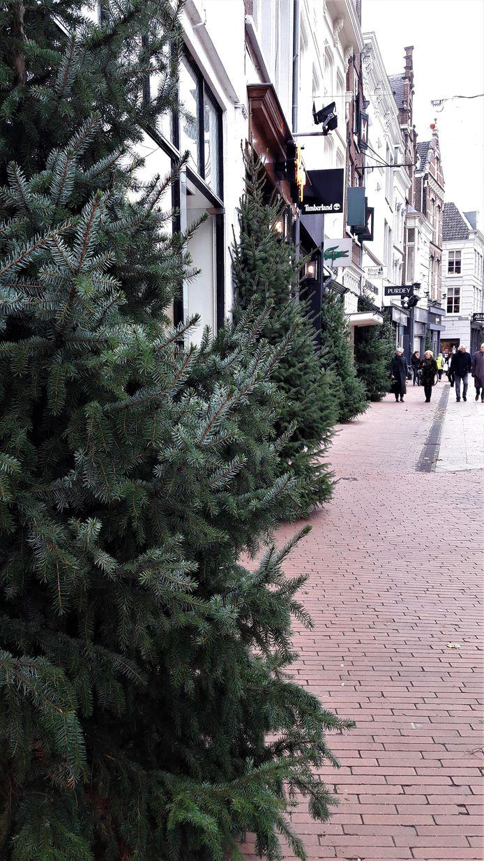 Er heerst weer een kerstsfeer in de stad.