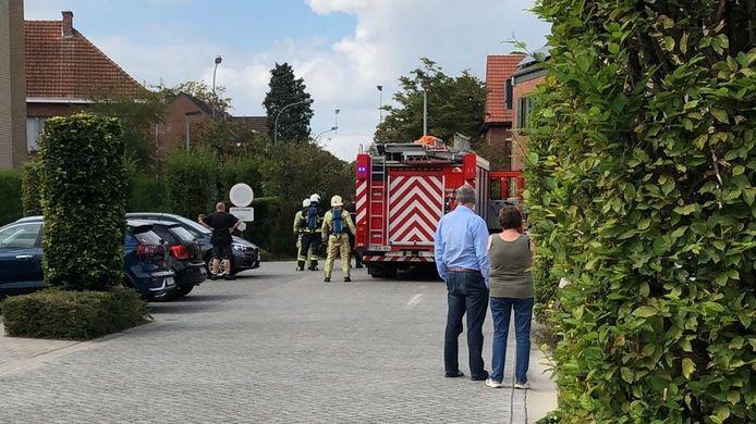 MECHELEN - De brandweer kwam ter plaatse en deed nazicht. Buren had de brandende haag zelf al kunnen blussen.