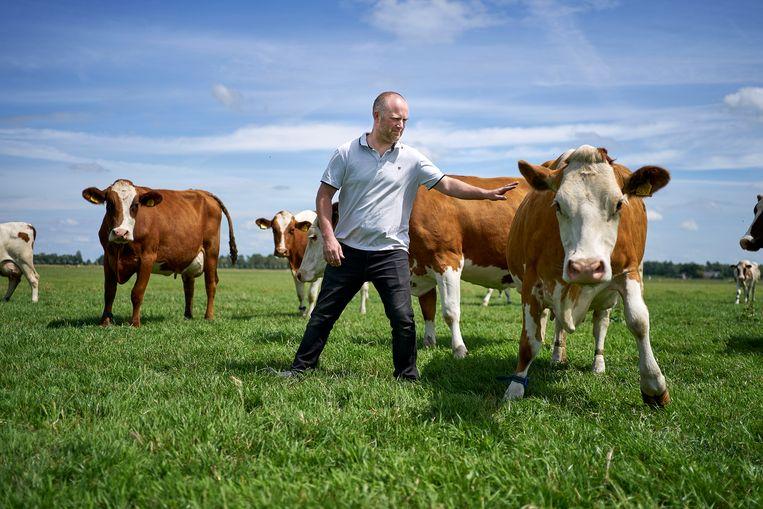 Boer Freek van Leeuwen doet al jarenlang zoveel als hij kan aan stikstofreductie op zijn boerderij.  Beeld Phil Nijhuis