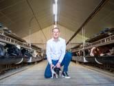 Boerenvoorman Fije (55) wil waardering én betere boterham voor boer: 'We zijn nu vogelvrij verklaard'