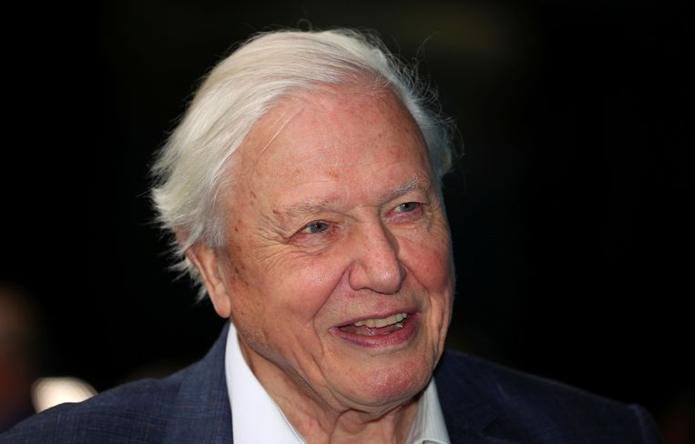 David Attenborough bij de première van zijn 'Blue Planet II', in 2017. Beeld REUTERS