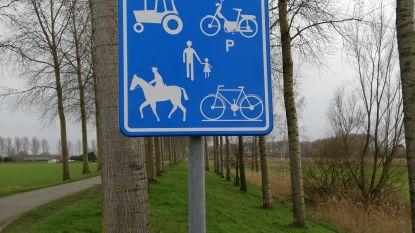 Verbod voor auto's en zone 30: rolstoelwandelpad langs de Krekeldijk veiliger gemaakt