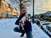 Hond Jet laat met haar grote oren harten smelten: 'Soms struikelt ze erover en maakt ze een koprol'