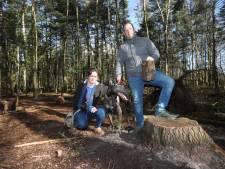 Hond Teddy gewond bij vondst 'granaatvormig ding' tijdens boswandeling in Valkenswaard: 'Ik wist niet wat ik zag'