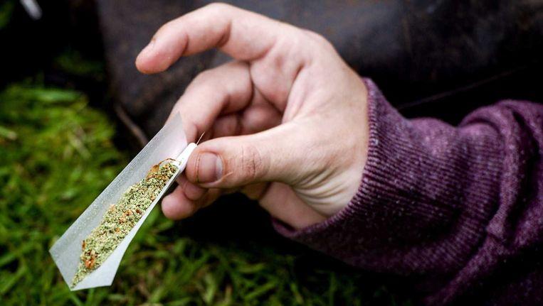 Een bezoeker draait een joint op Cannabis Bevrijdingsdag in het Flevopark in Amsterdam. Het festival wordt sinds 2009 georganiseerd door Verbond voor Opheffing van het Cannabisverbod Beeld ANP