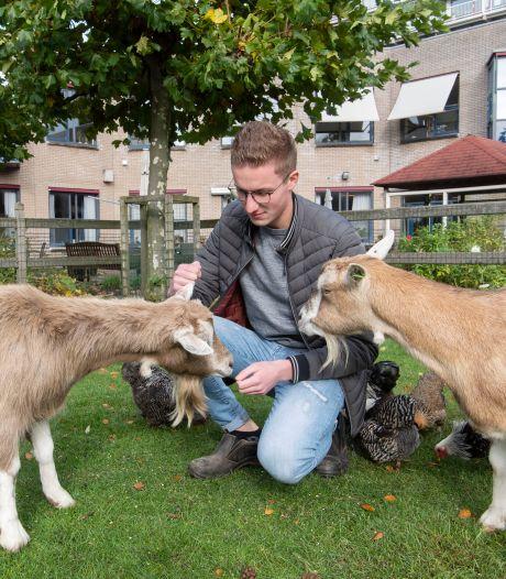Wie wil de geiten en kippen van Sytse (21) uit Goor? 'Het zijn echte knuffeldieren'