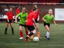 Bornse kunstgrasvelden moeten snel worden vervangen: 'Veiligheid van sporters komt in het geding'