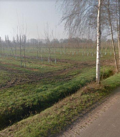 Oisterwijk staat open voor nog groter Pannenschuur: familie Van Herk beschikt over grond