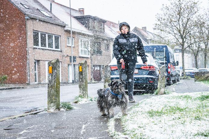 Sneeuw in april:  het lijkt geen weer om je hond door te jagen.