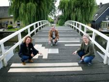 Streep door geplande sloop van Pinkeveerse brug